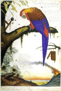 """La Historia Me Absolvera,"" 1999, by Walton Ford"