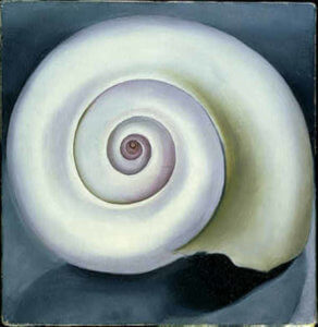 """Shell No. 1,"" 1928, by Georgia O'Keeffe"